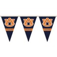 25 ft Party Pennant